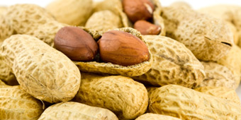 Ground Nuts Valency International Trading